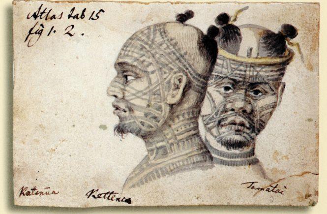 татуировки племён острова Нукагива, Тилезиус