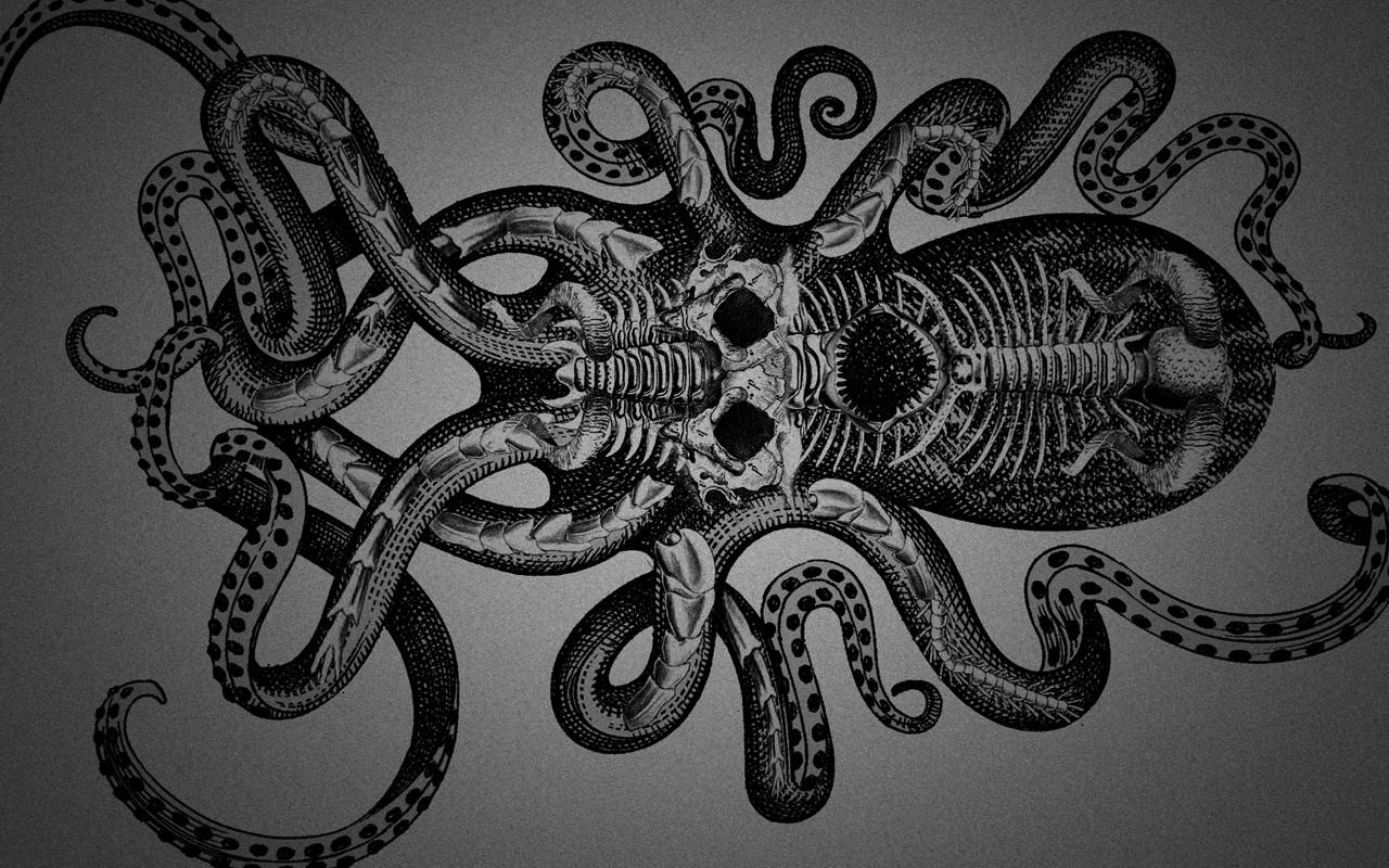 скелет кракена