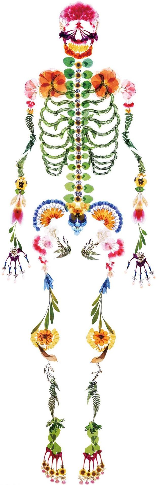 скелет из цветоов, nishinihon tenrei