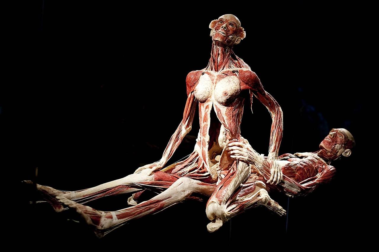 скандальный художник-скульптор Gunther von Hagens