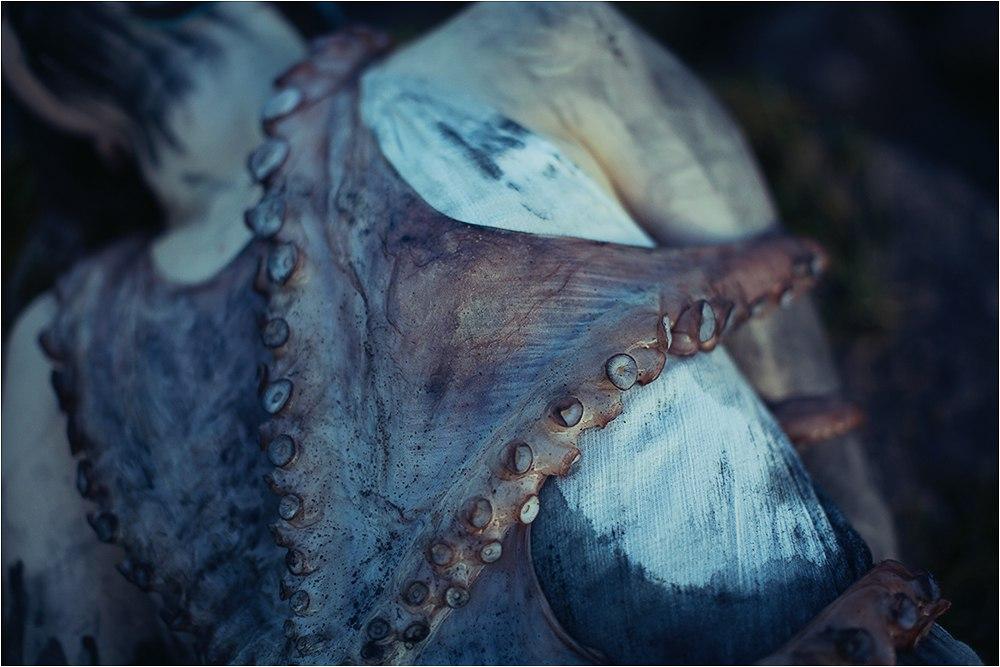 Наталья Karanlit - осьминог