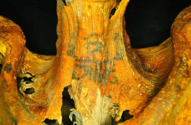 египетская татуированная мумия