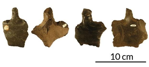 орудия татуировки древнего человека