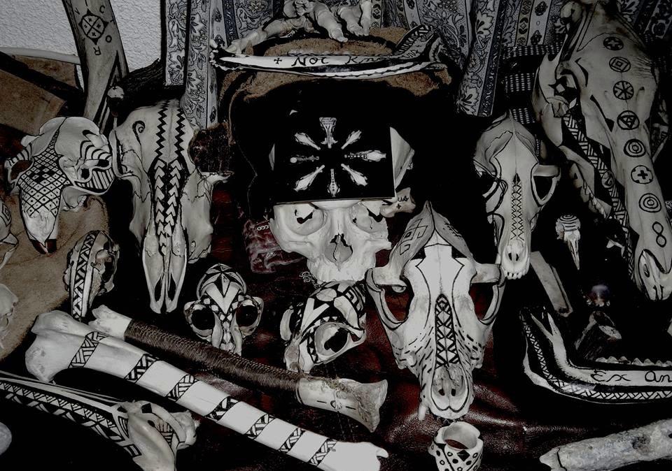 damien noll, пирография, выжигание, черепа животных, лупа, солнце, солнечные татуировки