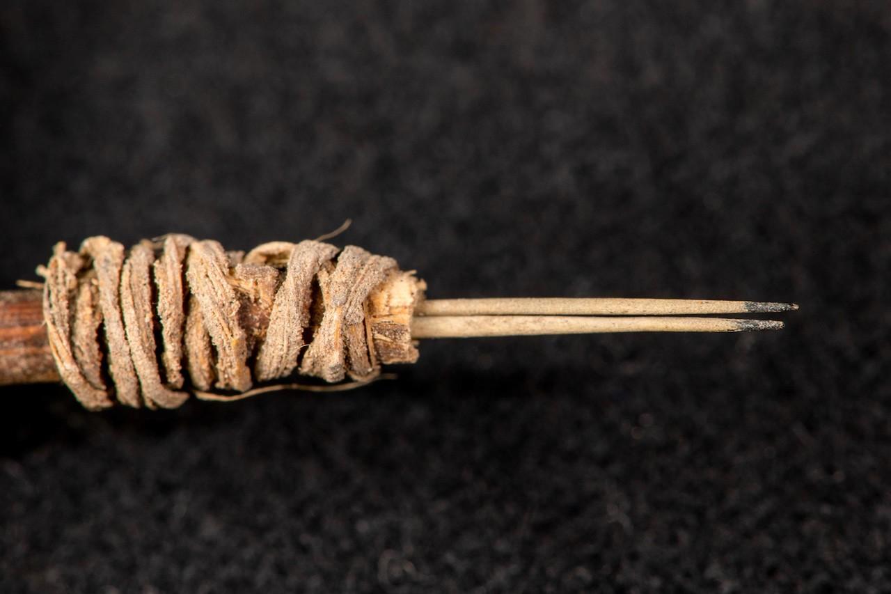 тату-инструмент, инструмент для татуировки, кактус, индейцы, хендпоук, археология, антропология, штат юта