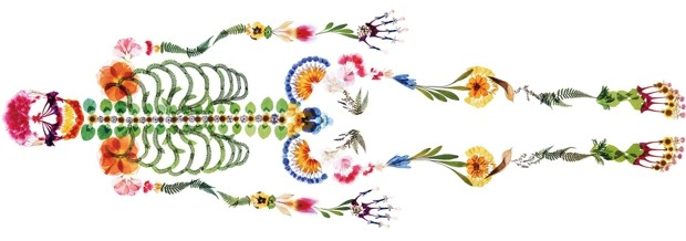 скелет из цветов, nishinihon tenrei