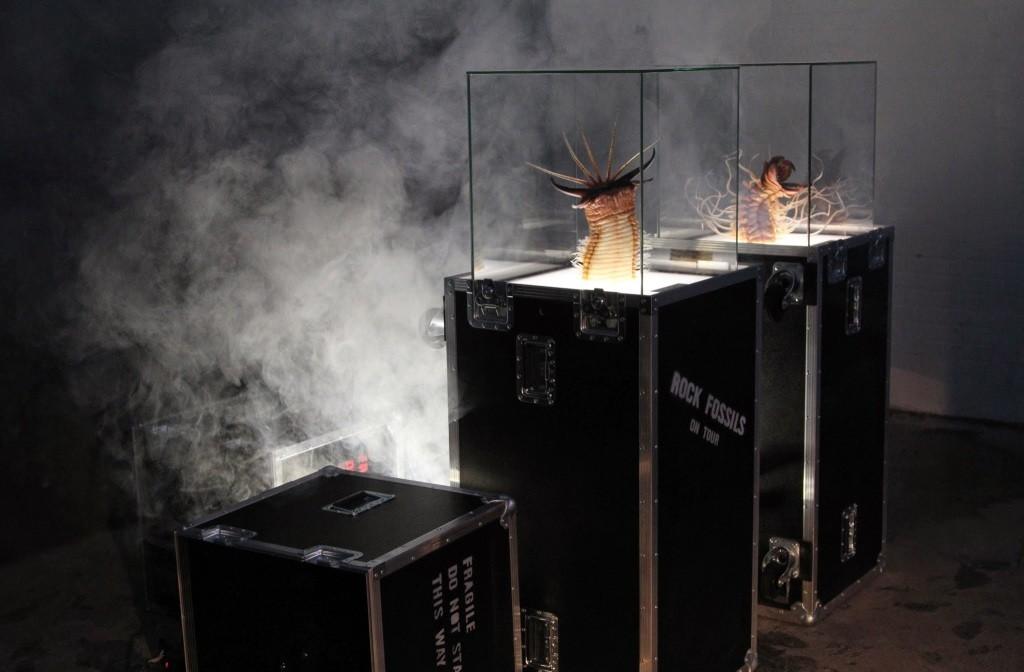 Heavy Metal And Punk Fossils, выставка, палеонтология, метал, панк, ископаемые