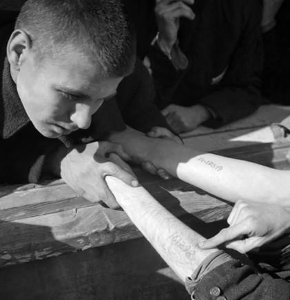освенцим, татуировки в концлагере, татуировка-номер, холокост, роман, нацизм, фашизм, война