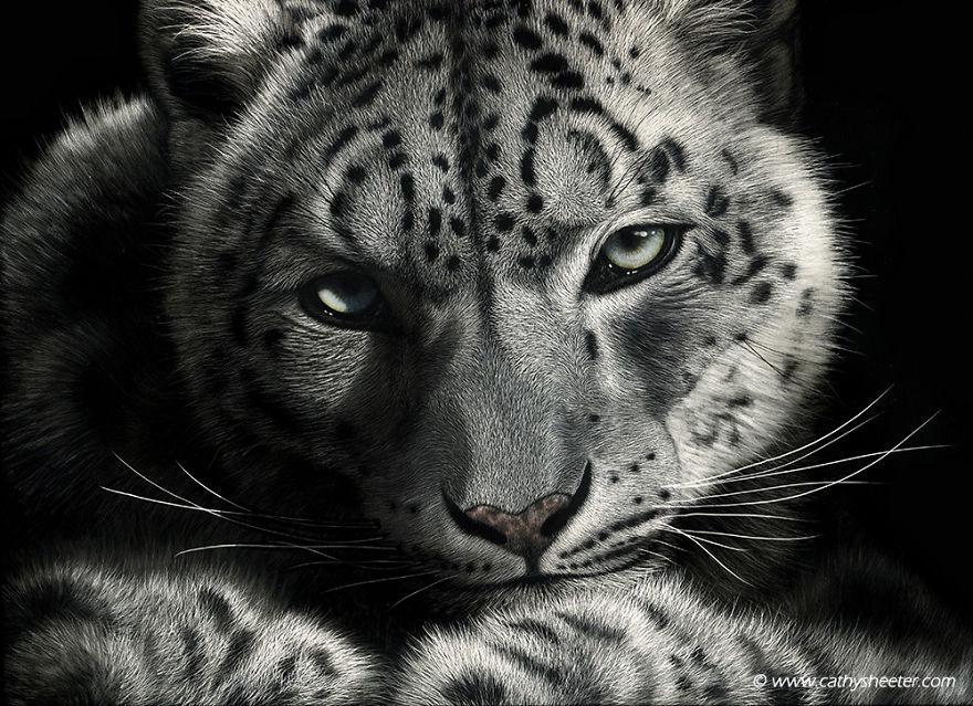 Кэти Шитерм, гиперреализм, скретчборд, иглы для татуировки, техника процарапывания, реалистичные изображения животных, животные, черная тушь