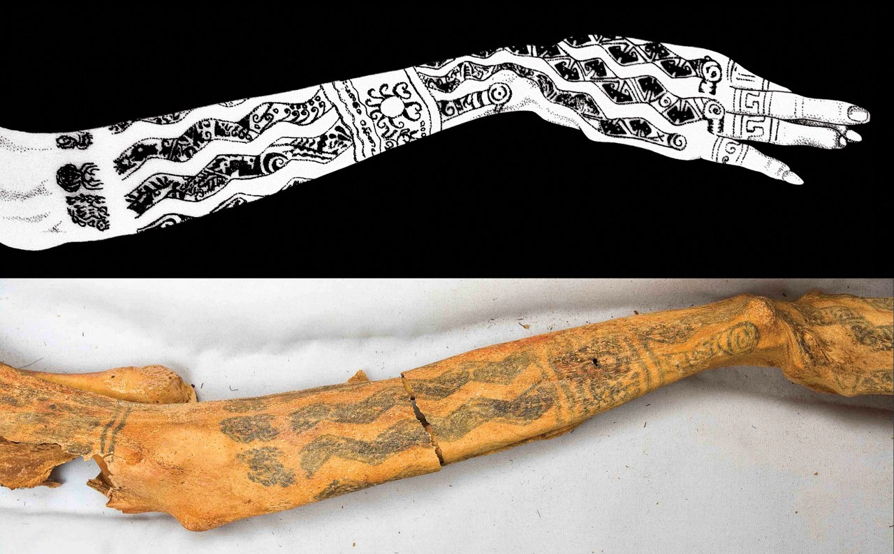 леди као, перу, южная америка, мумия с татуировками, татуированная мумия, древние татуировки, история татуировок, археология