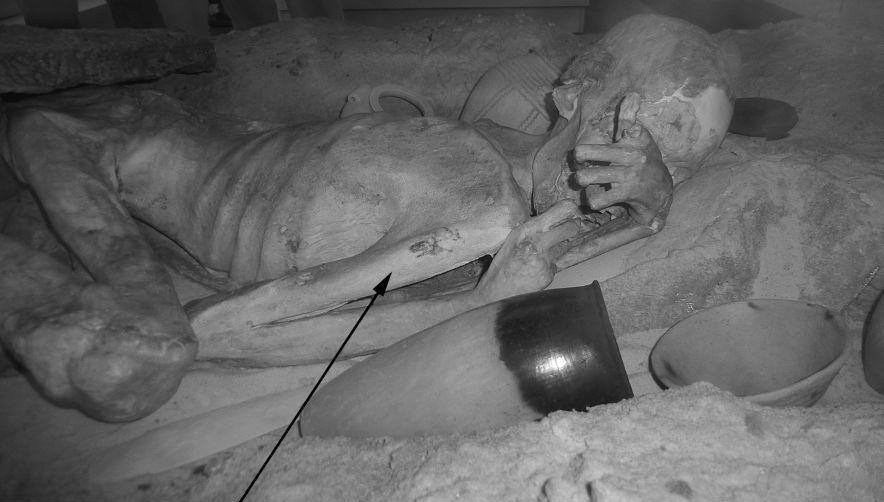 Найдены новые доказательства существования тату-культуры в древнем Египте 0